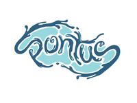 Pontus Logotype