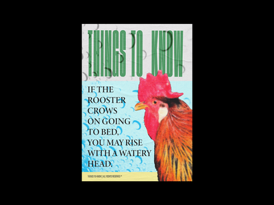 Rooster rooster graphic design poster print typography