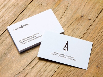 logo and business card for the forest expert bussines-cards logo