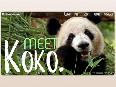 Pandalicious! - Panda Adoption Platform