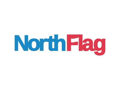 North Flag negativespace negative space blue red flag branding logo