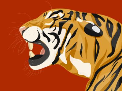 Tiger King 🐯