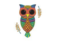 Colour pop : Owl