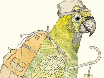 Hiking Parrot  illustration draw handmade lowgiant photoshop animals