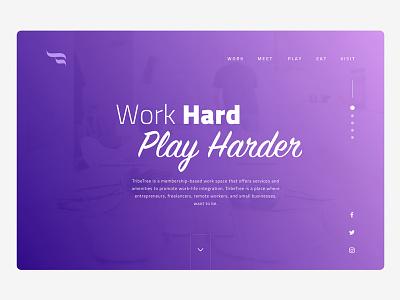 TribeTree web design landing page user interface site web design ux ui