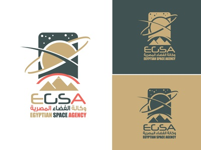 Egyptian Space Agency