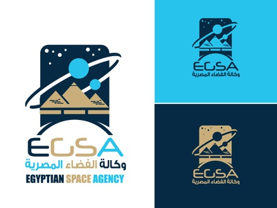 Another Egyptian Space Agency