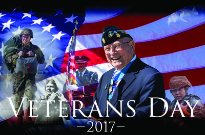 2017 Veterans Day Graphic