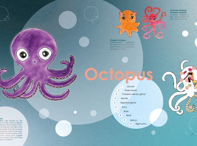 OCTOPUS, OH OCTOPUS...