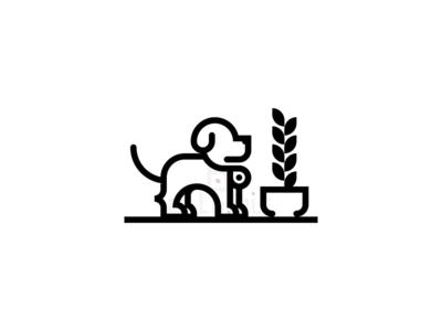 A little dog