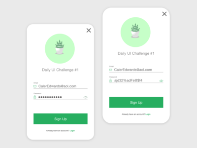 Daily UI - Day 1 Signup