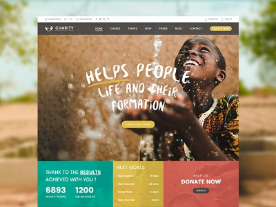 Charity WordPress Theme nonprofit donations donation donate charity wp charity wordpress charity theme charity hub charity foundation charity agency charity