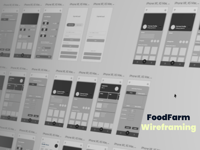 Food Farm Apps Wireframe userflow shopping apps wireframing wireframe design minimal figma adobe xd ui ux