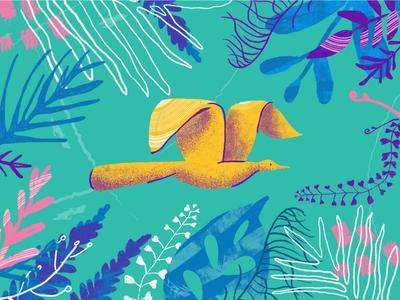 Nature nature illustration beauty flowers naturelovers landscape travel illustrator colors fly plants plant nature
