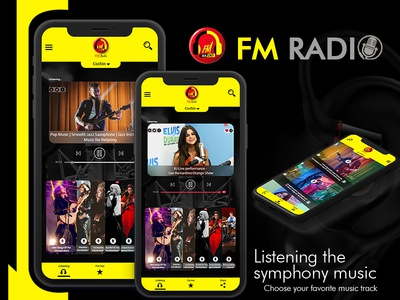 Fm Radio Model