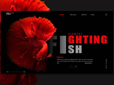 Fighting Fish Website Concept