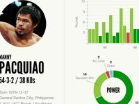 Boxing profile concept