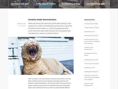 Blogs, type & tears typography gotham blog grid