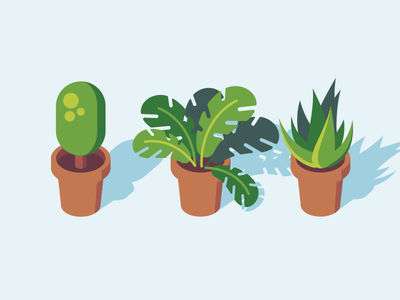 House Plants flat illustration vector nature plants house