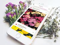 GrowIt! App - garden socially