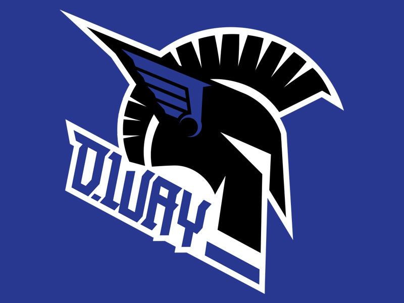 Danny Way Branding crest icon helmet logo branding dway skateboarding danny way