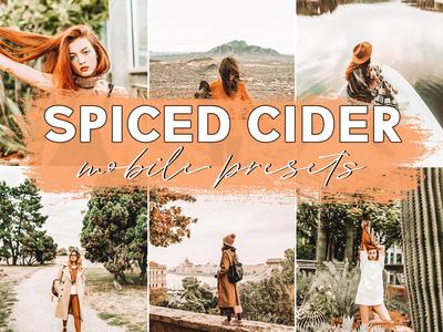 Spiced Cider Mobile Blogger Lightroom Presets