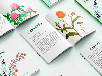 Plants book font cover design poligraphy cover photoshop books book typography style design