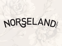 Norseland Identity Concept