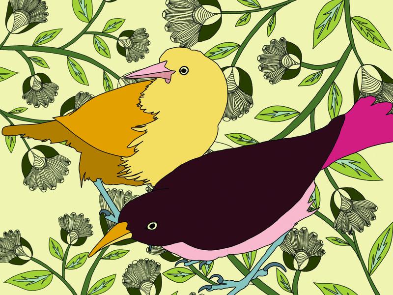 Birds design procreate app ipad illustration digital illustration
