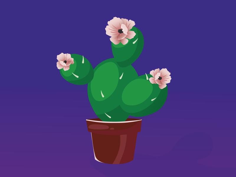cactus picture vector cactus art illustration