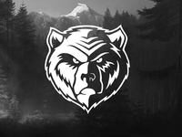 Bears #3
