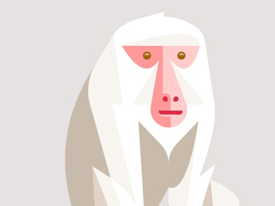 Japanese Macaque japanese macaque primate josh brill lumadessa character design illustration print