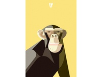 Lumadessa Chimp Wallpaper