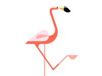 Flamingo WIP