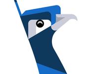 Peacock WIP