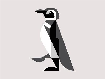 Magellanic Penguin WIP bird branding logo art artwork illustration design magellanic penguin penguin