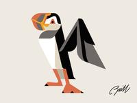 Atlantic Puffin character design study