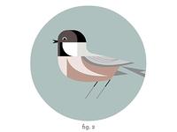 Chickadee Habitat Edition WIP