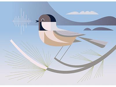 Chickadee Dee Dee illustration design brill josh print art bird chickadee