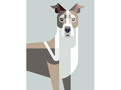 Truffles Portrait brill josh dog illustration art design portrait truffles