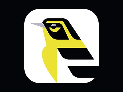 Townsend's Warbler Icon birding artwork art illustration design ui bird warbler