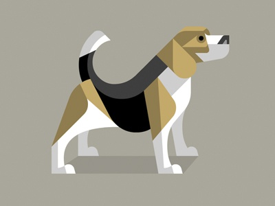 Dog bd dribbble