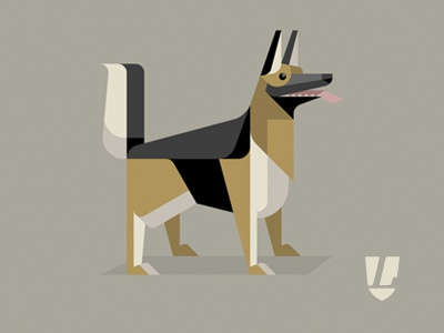 Dog gs dribbble