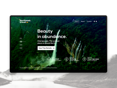 Travel Website - Landing