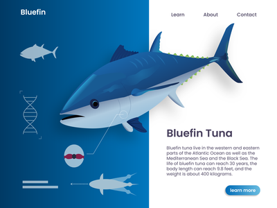 Bluefin shadow dataviz deepblue webdesign ocean deep sea fish tuna bluefin illustrator digitalart website web gradual change flat design ux vector ui illustration