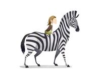 Wild Adventure Zebra