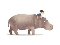 Wild Adventure Hippo