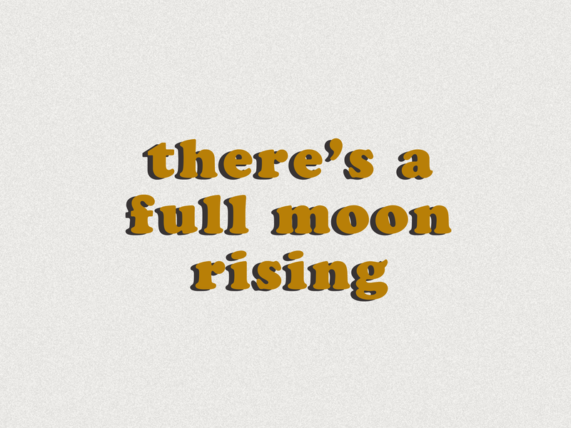 Harvest Moon ui typography design illustration