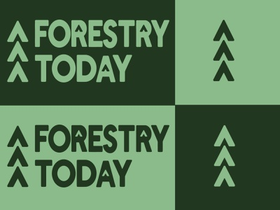 Forestry Today branding logo