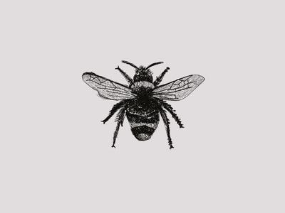 Jam Series Sketch - Bee